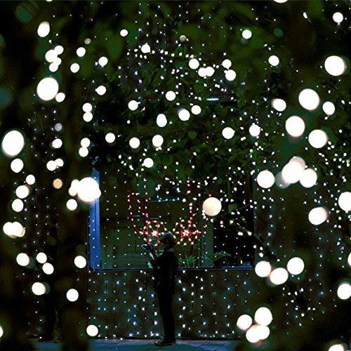 Heavy Duty Commercial G40 Globe Led String Lights,17Ft 25 Outdoor Cool White  Christmas Lights - Bulk Christmas Lights: Amazon.com