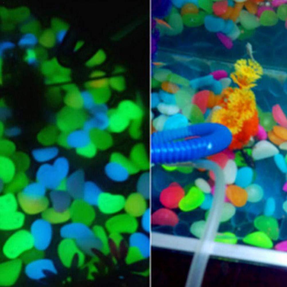 Pietra Decorativa per Acquario beautijiam Set di 50 ciottoli fosforescenti Che Si Illuminano al Buio Conchiglie Marine Pietre Decorative per vialetti e vasi Conchiglie Stelle Marine