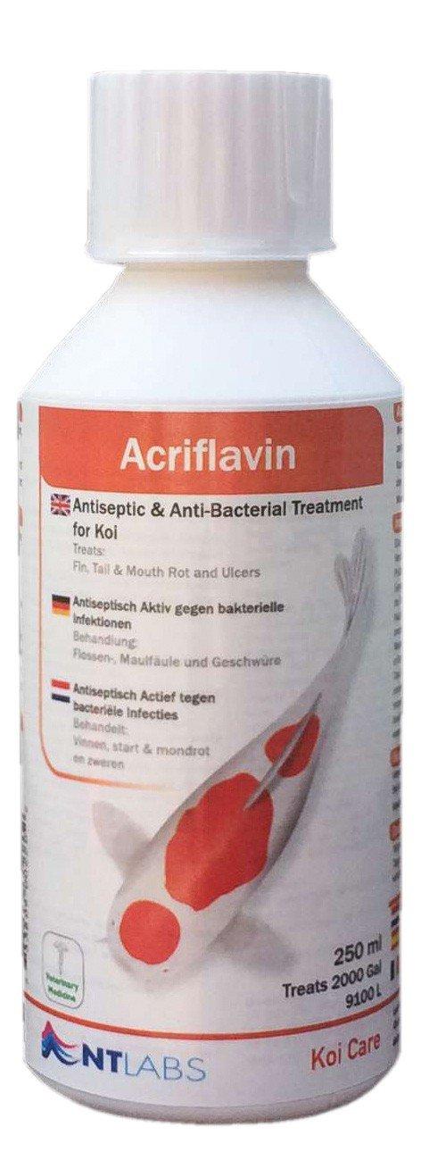Koi Care Acriflavin, 2.500 ml - Antiseptikum gegen Bakterien NT Labs