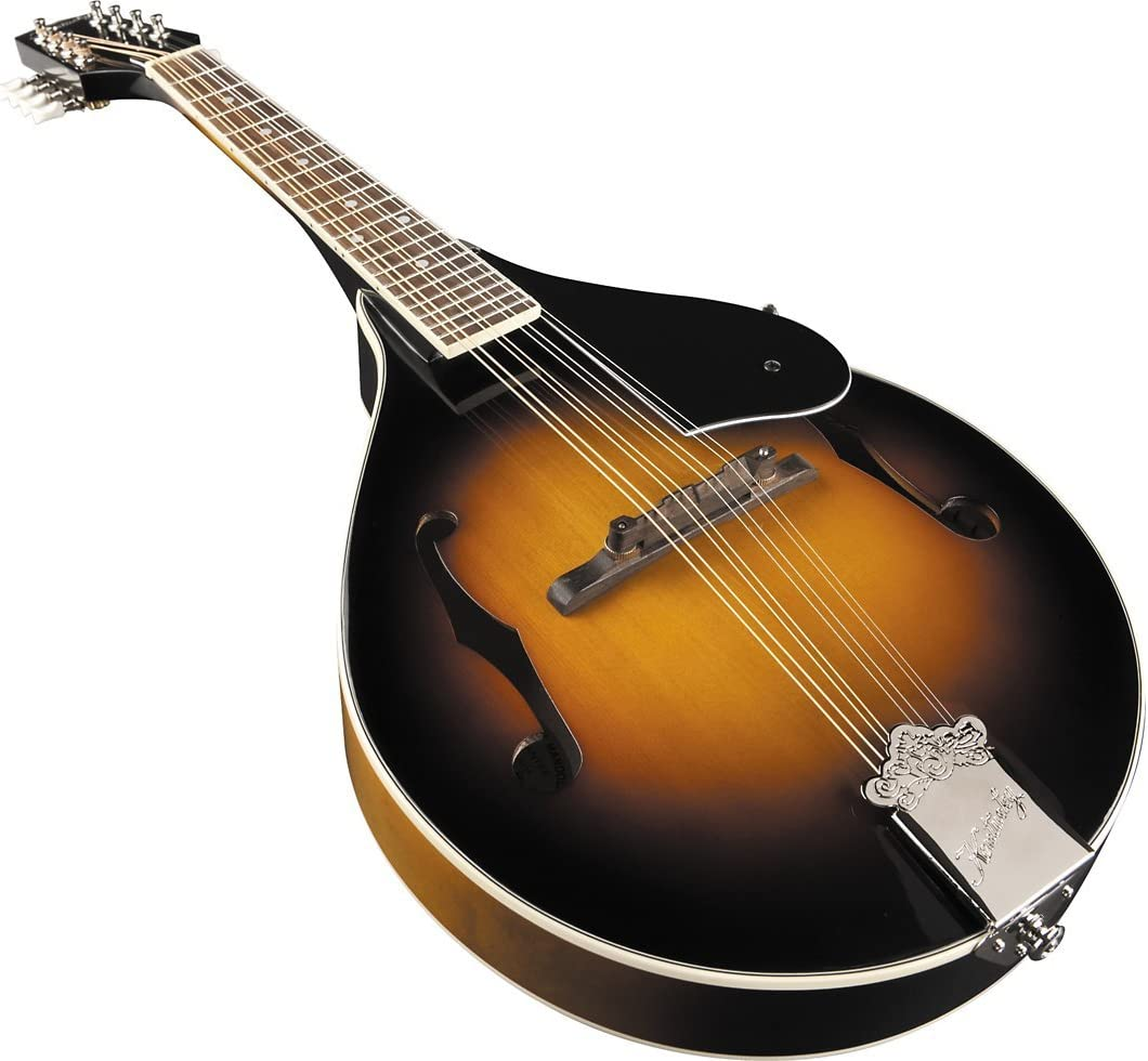 Best Mandolin Under 1000 Dollars