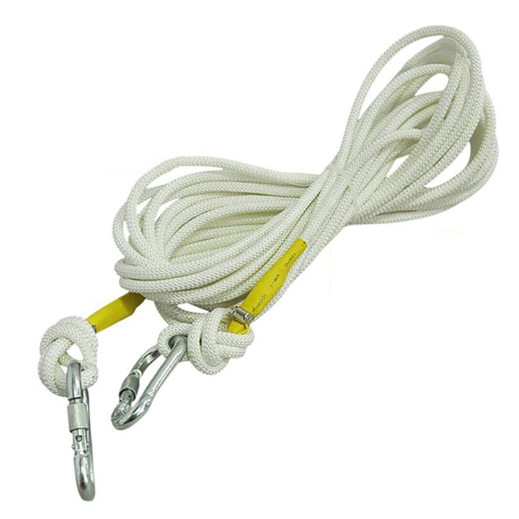 オリジナル HSBAIS プロ クライミングロープ ザイルガイロープ 高強度 プロ 安全 アウトドア、9mm 太さ B07QLKVZPZ 高強度 補助ザイル、および2 カラビナ B07QLKVZPZ white 20m(66ft) 20m(66ft)|white, 腕時計アパレル雑貨小物のSP:0b9b92ae --- a0267596.xsph.ru