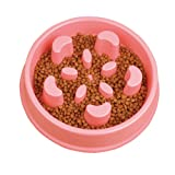 STARUBY Slow Feed Dog Bowl, Slow Feeder Pet