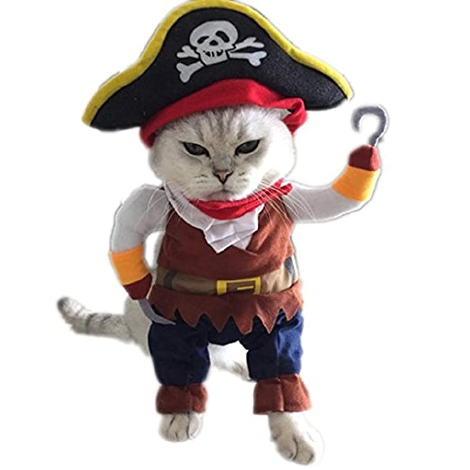 Amazon.com: Pet Prendas de vestir, howstar perro gato ...