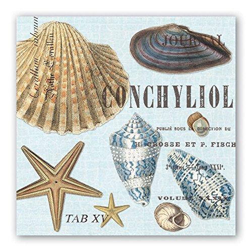 (Michel Design Works 20-Count 3-Ply Paper Cocktail Napkins, Seashells)