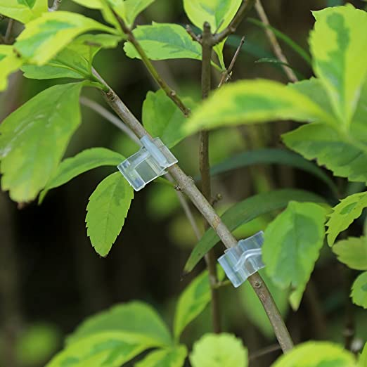 Fdit 100 pinzas para manualidades con clip para plantas, diseño de ...