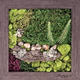 Carpentree 15''x15'' Psalm 23-Biophilic Framed Art