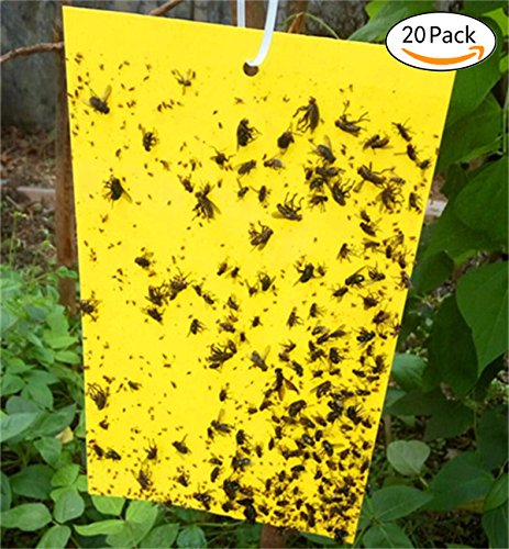 COVASA 20-Pack Sticky Fly Paper Strips, Fly Trap , Fly Ribbons,Dual-Sided Yellow Sticky Traps for Flying Plant Insect
