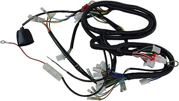 Amazon.com: CHINESE GY6 150CC WIRE HARNESS WIRING ASSEMBLY SCOOTER MOPED  SUNL ROKETA: AutomotiveAmazon.com