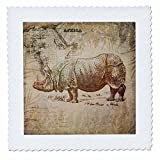 3dRose Andrea Haase Animals Illustration - Rhinoceros Illustration With Africa Map - 16x16 inch quilt square (qs_271182_6)