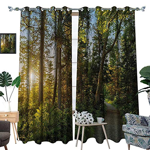 luvoluxhome Window Curtains Sun Blocking Curtains for Living Room/Bedroom Park in Cape Breton Highlands Canada Forest Path Trees Tranquility Photo Blue Gr 120
