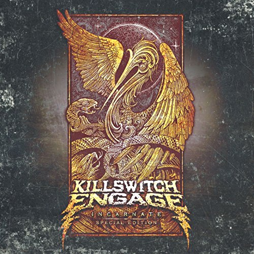 Incarnate explicit by killswitch engage on amazon music amazon incarnate explicit m4hsunfo