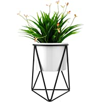 Furn Aspire White Ceramic Round Small Plant Pot with Black Color Arch Wrought Iron Stand