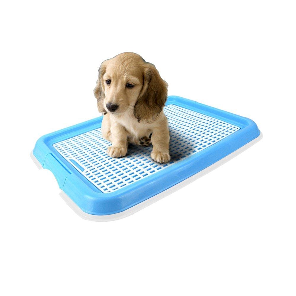 Dog Toilet, Interior Mascota Cachorro Potty Training Pad soporte, protección del suelo bandejas para perros y gatos: Amazon.es: Productos para mascotas