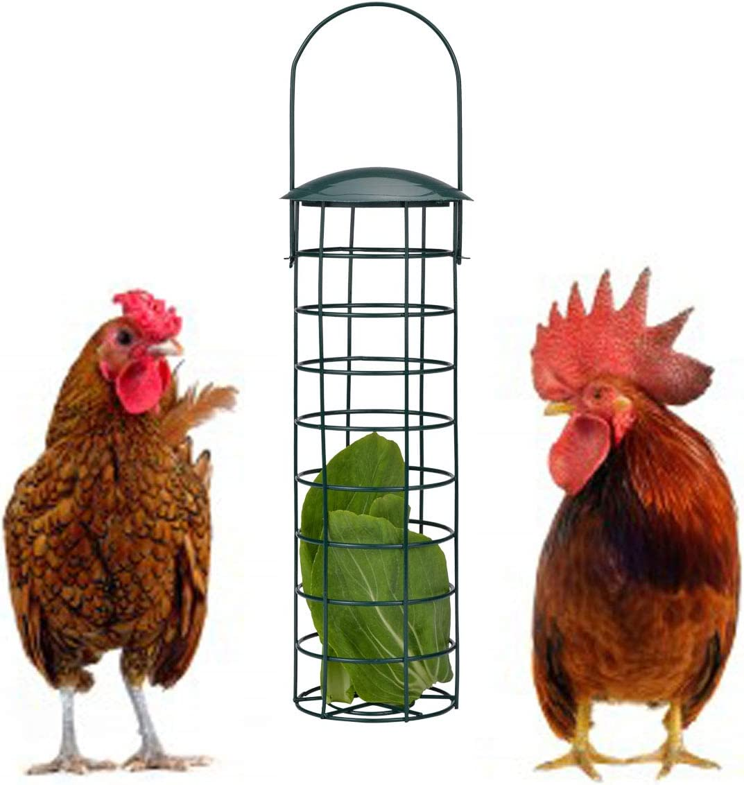 lanermoon Chicken Hanging Foraging Coop Toys for Hens, Iron Feeding Treat Box with Fruit Vetgetable for Parrot Bird Cage Feeder Toys