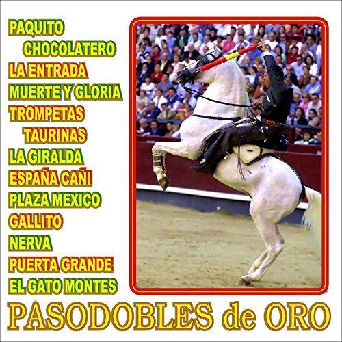 Amazon.com: El Gato Montes: Gran Orquesta Tìpica Tradicional: MP3