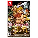 Tiny Barbarian DX (Import Game)