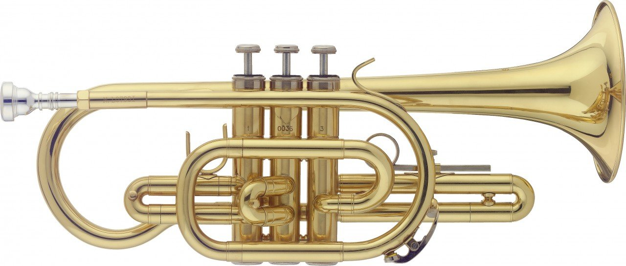 Stagg WS-CR215 Bb Cornet with Case by Stagg
