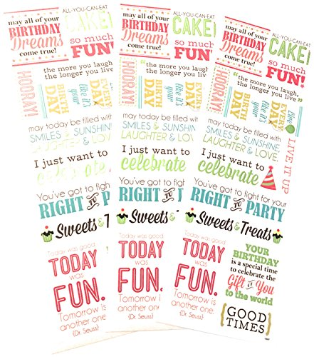 42 Pieces! Multi-Pack | Birthday Dreams Vellum Message Stickers with Foil Accents | Planner & Scrapbooking (Sayings Scrapbook Stickers)