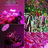 [Pack of 2]100W Led Plant Grow Light Bulb, Full