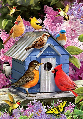 Songbird Birdhouse - Garden Size, 12 Inch X 18 Inch, Decorative Double Sided Licensed, Trademarked and Copyrighted Flag Printed IN USA by Custom Decor (Birdhouses Garden)