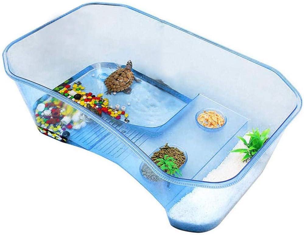 Box Turtle Habitat
