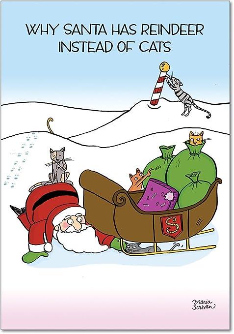 Amazon.com: Gatos de renos Navidad Broma tarjeta de ...