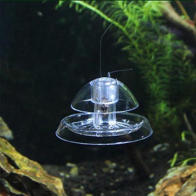 UEETEK Trampa de caracol plástico Snai Catcher para acuario de acuario de agua: Amazon.es: Productos para mascotas