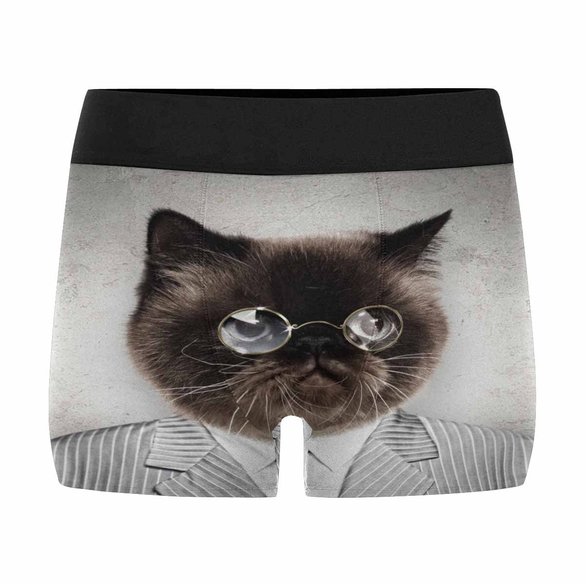 XS-3XL INTERESTPRINT Mens All-Over Print Boxer Briefs Funny Fluffy Cat in a Business Suit Businessman