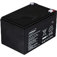 Powery Batería de GEL para Sillas de ruedas