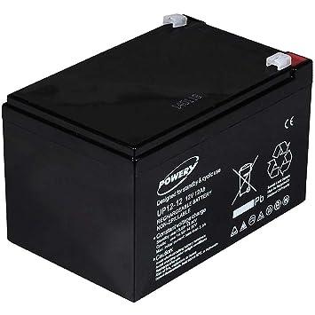 Powery Batería de GEL para E-Bike (Bicicleta Eléctrica) 12V 12Ah: Amazon.es: Electrónica