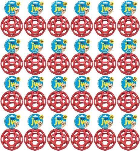 JW Hol-ee Roller Medium 24pk by JW