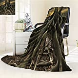 Fleece Blanket 300 GSM Anti-static Super Soft shot of a banyan tree in florida Warm Fuzzy Bed Blanket Couch Blanket(60''x 50'')