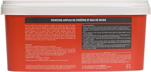 Peinture Pour Appuis De Fenêtre 1 Litre Anthracite Amazonfr