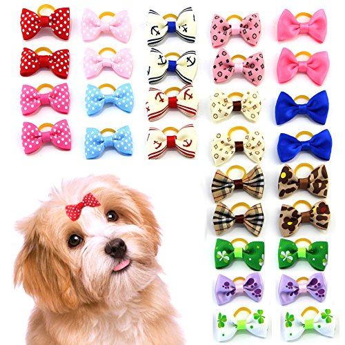 61Ih1R%2B2PfL - MEWTOGO 30 pcs/15 pairs Pet Hair Bows With Rubber Bands-Dog Hair Accessories with Different Pattern (rubber band)