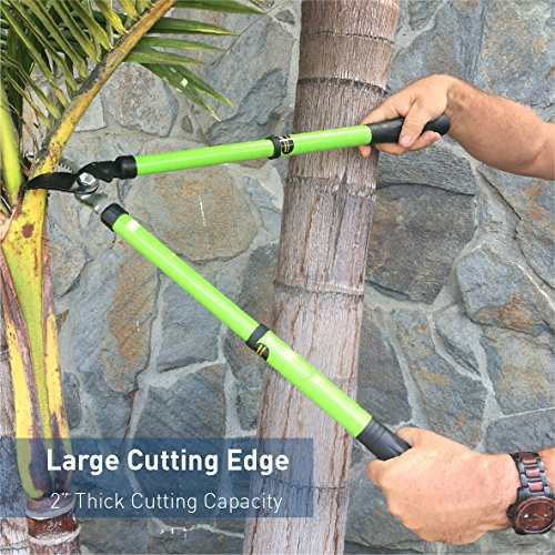"""18"""" – 24"""" Telescoping Lopper with Hand Pruner Set – Single Pivot Bypass Tree Lopper with Extendable Handles and Bonus Garden Pruning Shear Clippers by EasyGoProducts (Image #5)"""