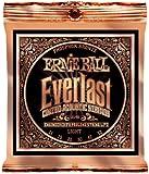 【正規品】 ERNIE BALL アコースティックギター弦 エヴァーラスト フォスファーブロンズ ライト (11-52) 2548 Everlast Phosphor Bronze