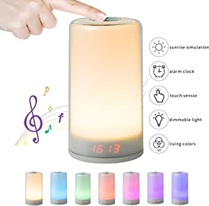 Wake Up Light, NGOZI Sunrise Alarm Clock Night Light with 5 Nature Sound, Touch Control,3 Brightness Levels, 256 Color RGB Mode