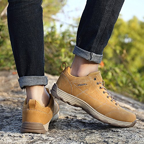 NEOKER Mens Hiking Walking Shoes Trekking Boots Outdoor Sports Low Rise Climbing Sneaker Black Brown Grey Army Green Orange Blue Khaki 39-48 Khaki-1 xYzxqlF