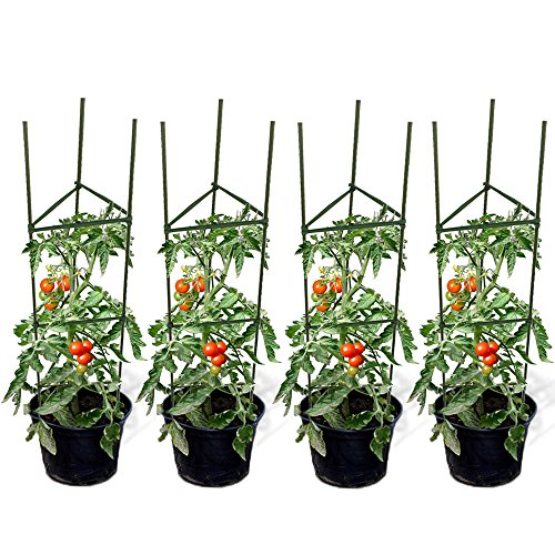 GTIDEA Set of 4 Tomato Cages Coated Galvanized Steel Heavy Study 4 Feet Garden Herb Plants Stakes with Trellis Connectors ()