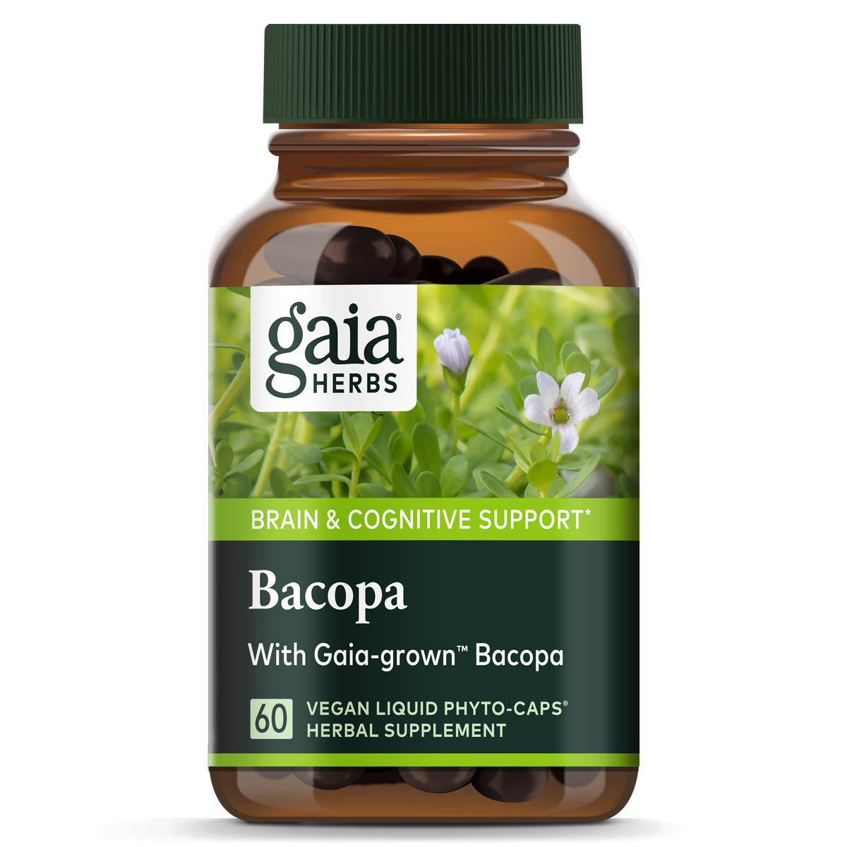 Bacopa, Brain and Cognitive Support