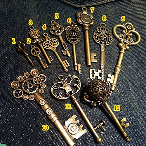 WellieSTR Vintage Skeleton Keys Charm Set Royal Key in Antique Bronze Pack of 12 Keys, 12 Different Style, No Repeat