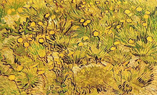 Posterazzi Poster Print Collection A Field of Yellow Flowers