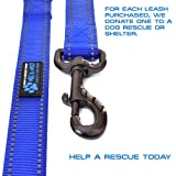 Max and NeoTM Double Handle Traffic Dog Leash