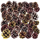 45 Pine Cones. Thanksgiving Home Decoration Set. Use it with Harvest Pumpkins Gourds Pine Cones and Leaves to Decorate and make your own Holiday Wreath and Centerpiece. Fall Autumn Wedding Décor Party