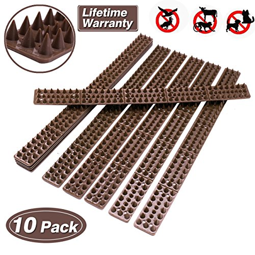 Bird Spikes for Pigeons Small Birds Critters - 16 Feet Bird Repellent Spikes Plastic Bird Deterrent Spikes Anti Bird Spikes Strips-Idea for Fences Walls Railings Sheds Roof(10 Strips) (Small Fence)
