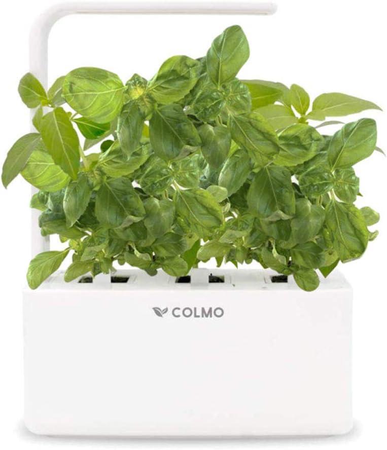 Indoor Herb Garden Kit with LED Spectrum Hydroponic Herb Garden Kit Basil & Parsley Seed Garden Planter in Home Smart Window Fresh Herbs Veggies Planter (2 Seeds)