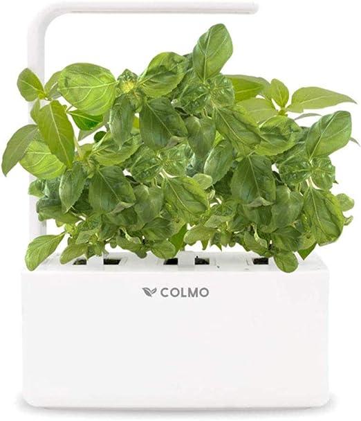 COLMO Jardín Interior Smart Garden Kit con Spectrum LED hidropónico Auto-riego en el hogar Smart Herbs & Veggies Planter: Amazon.es: Jardín