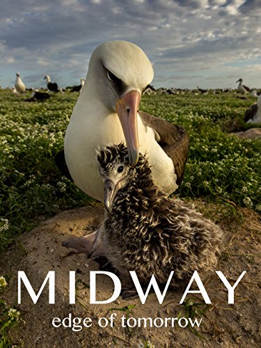 Midway: Edge of Tomorrow - Midway De