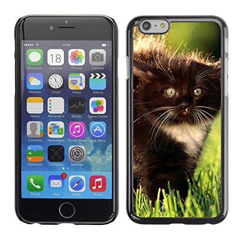 "Premio Sottile Slim Cassa Custodia Case Cover Shell // V00002978 minou noir duveteux // Apple iPhone 6 6S 6G PLUS 5.5"""