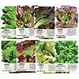 Lettuce Lovers Collection (8 Individual Packets of Lettuce...